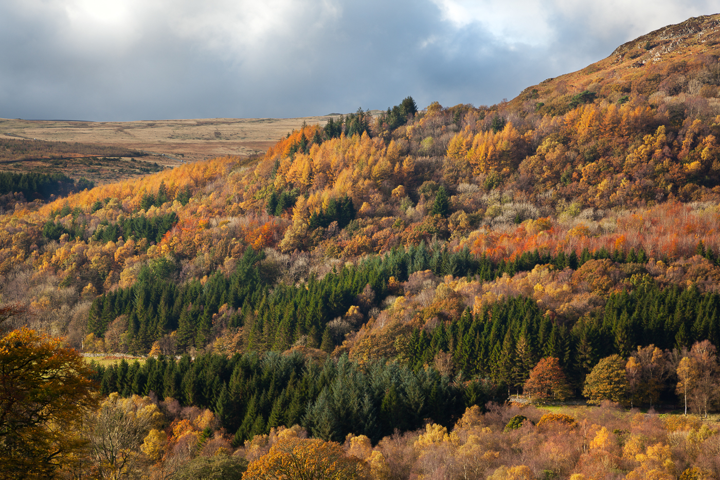 Paul Craig Interior Photographer Personal Work Lake District Autumn