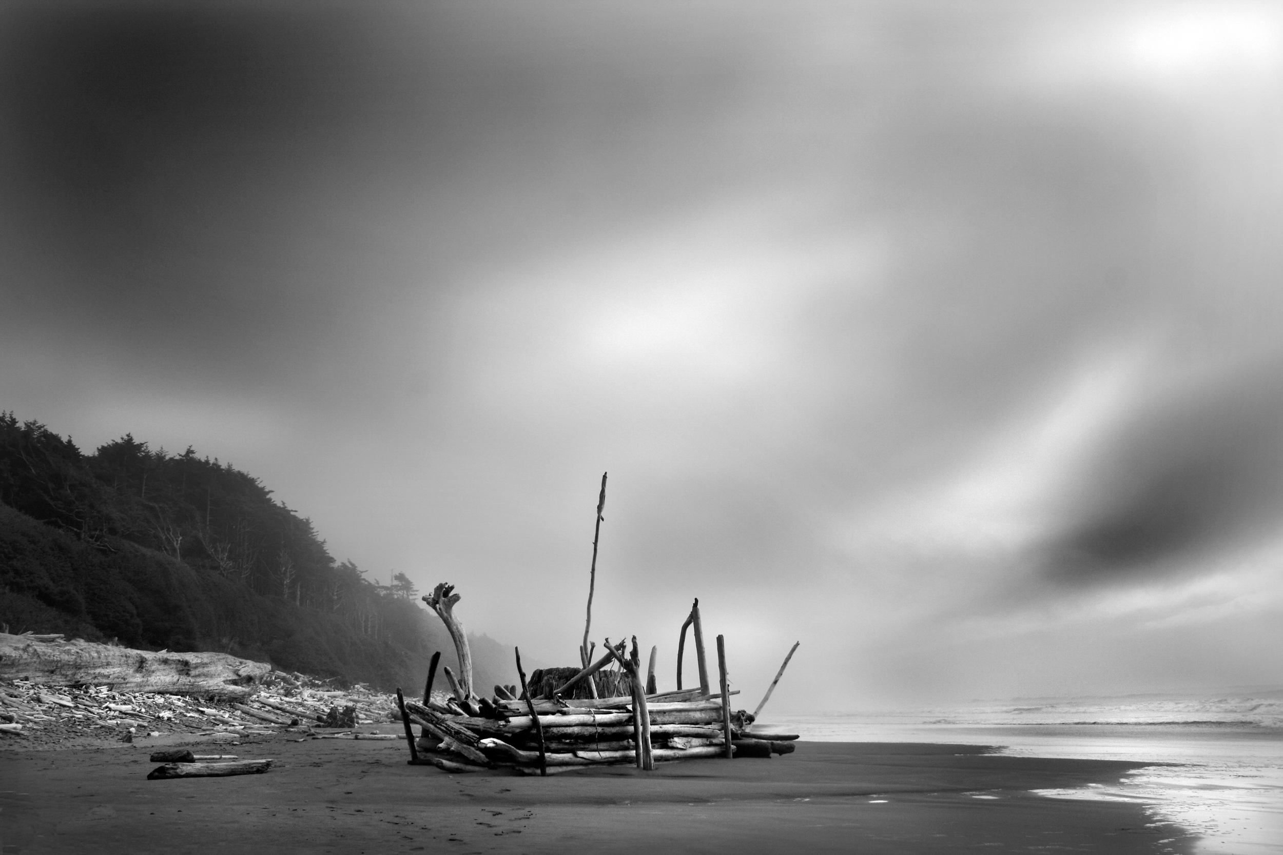 Paul Craig Interior Photographer Personal Work Driftwood on beach