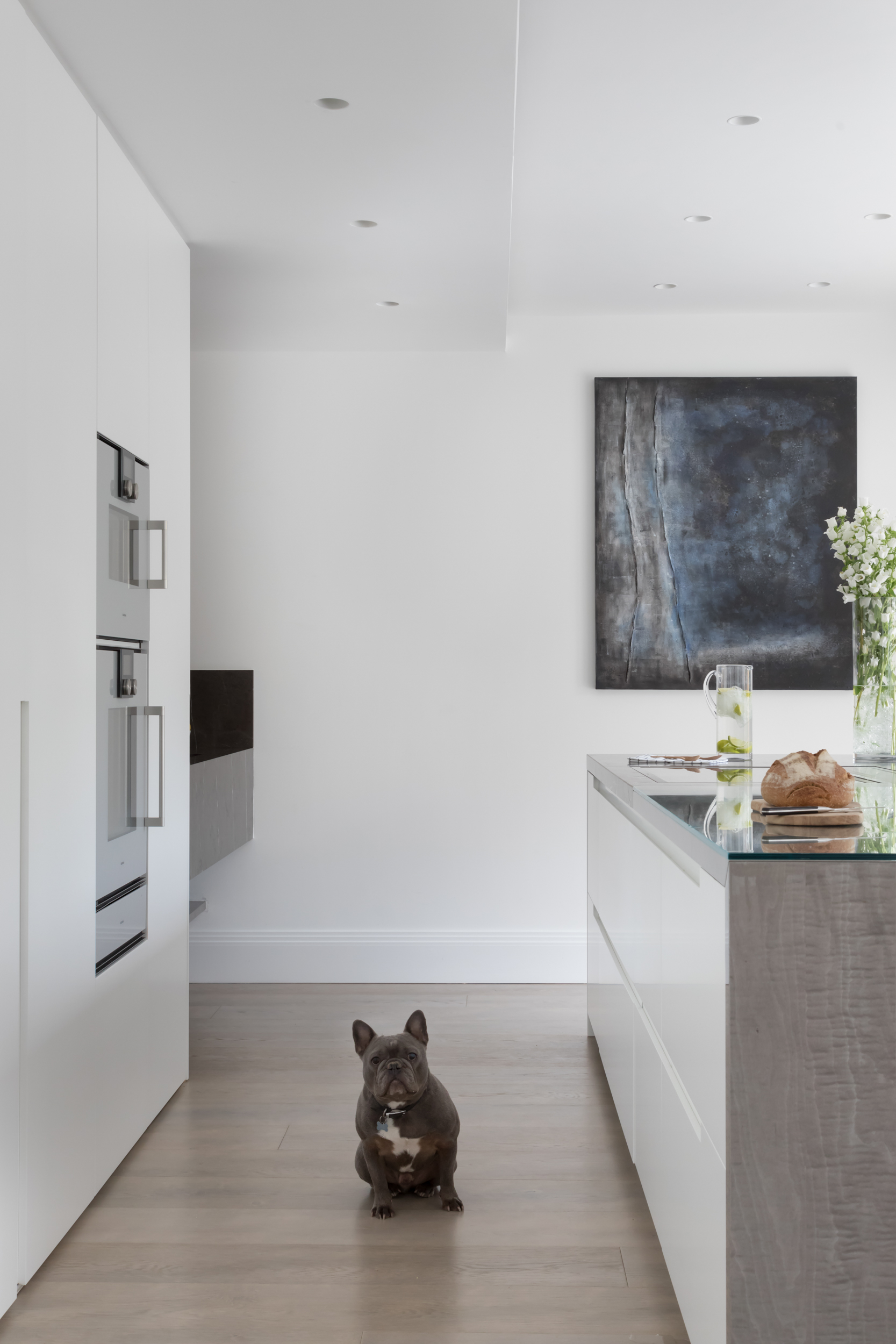 Paul Craig Interior Photographer, People Photography, Dog in Kitchen