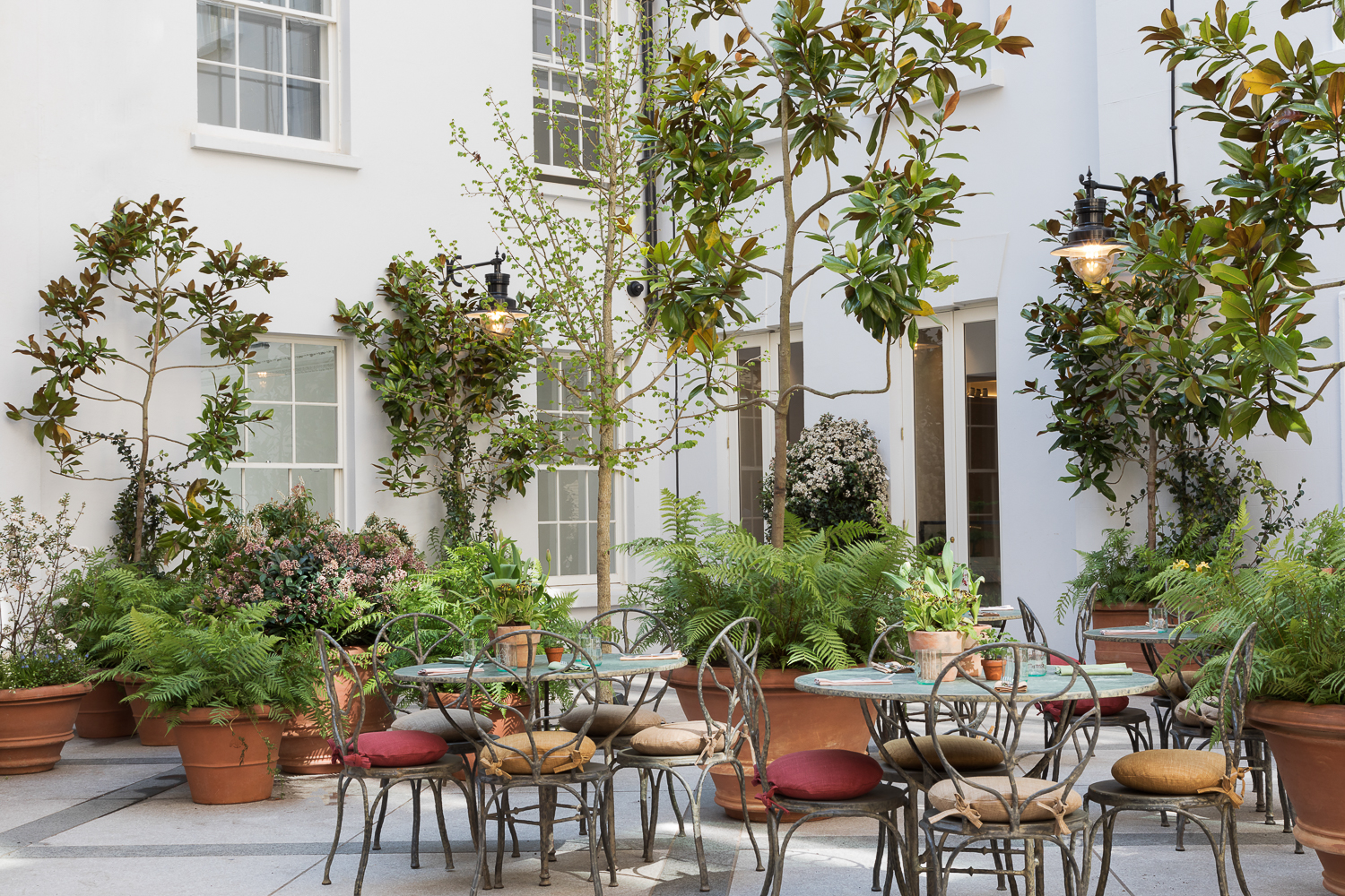 Paul Craig, Interior Photographer, Restaurant Photography, Commercial Property Dining Food Courtyard