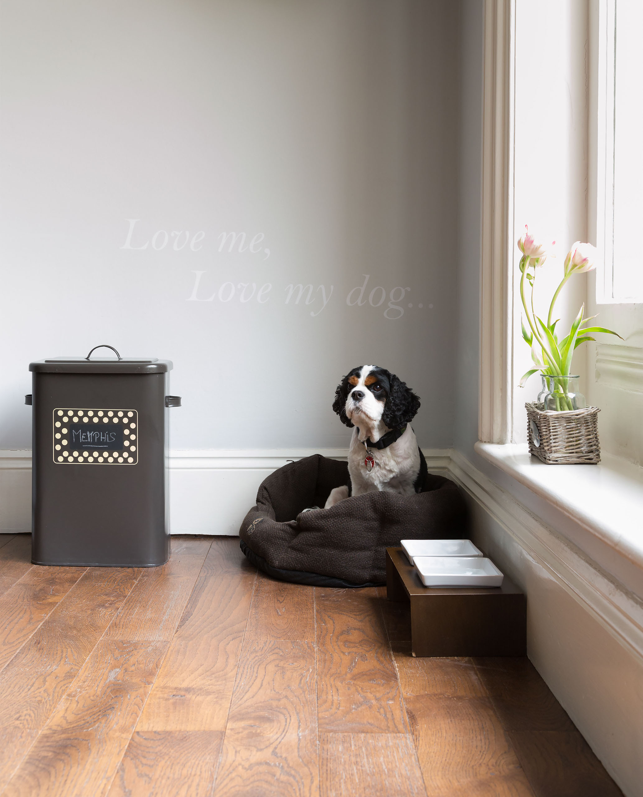 Paul Craig Interior Photographer London, People Photography, Dog in basket
